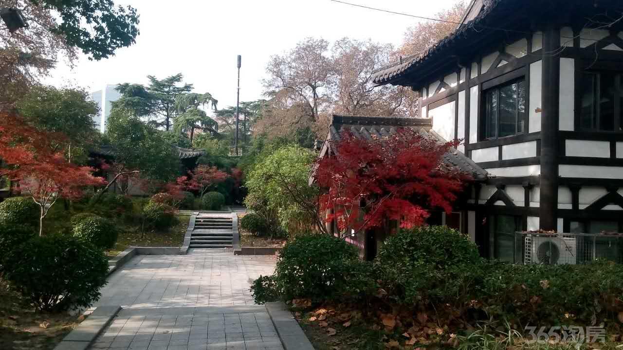 玄武 玄武门 玄武湖公园内 独栋别墅 可分租 旅游风景区 环境优美