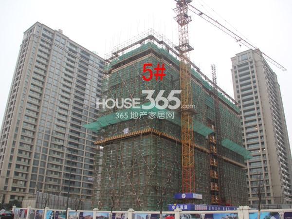 绿城玉兰广场5#楼工程进度图(2015.1)