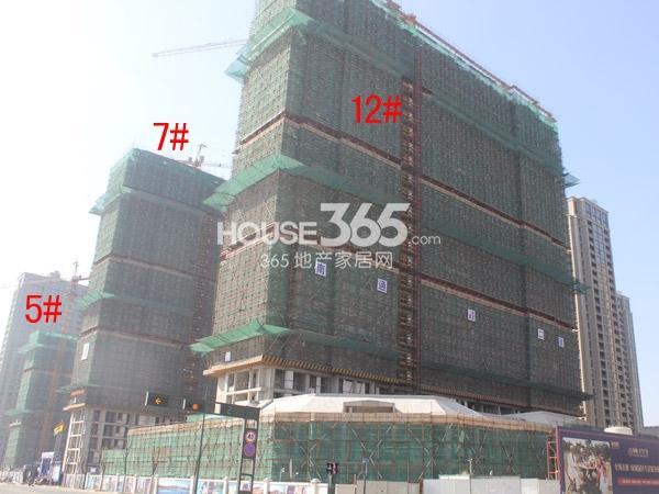 绿城玉兰广场5#、7#、12#工程进度图(2015.2)