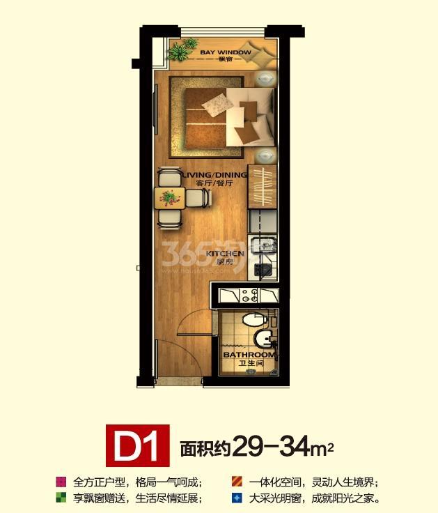 华元欢乐城小宝D1户型约29—34方户型图