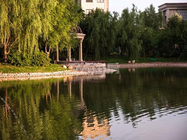 园林实景图 拍摄于2015年8月19日