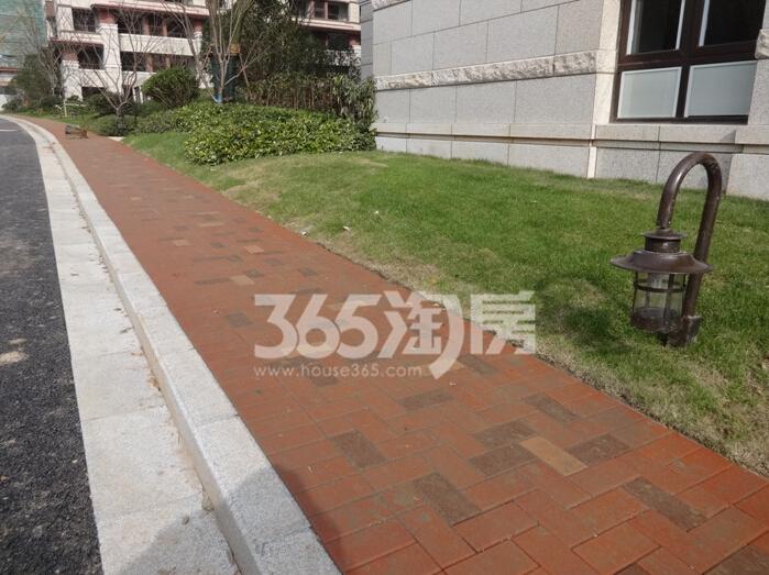 高科荣境小高层绿化道路实景图(12.8)