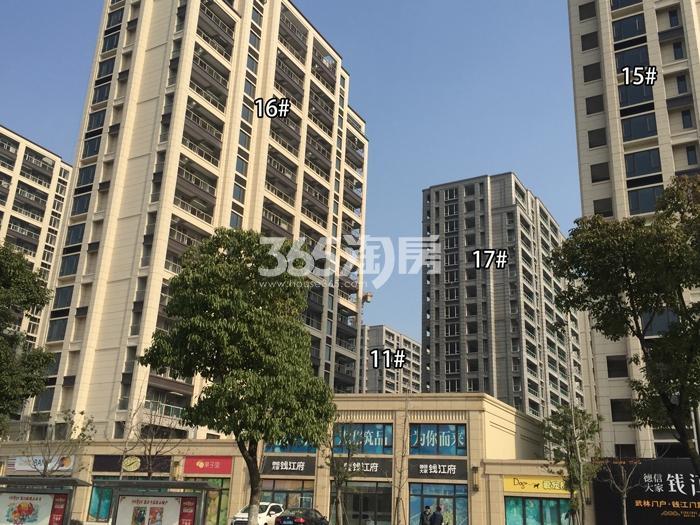 德信大家钱江府11、15、16、17号楼施工实景图 2016.1摄