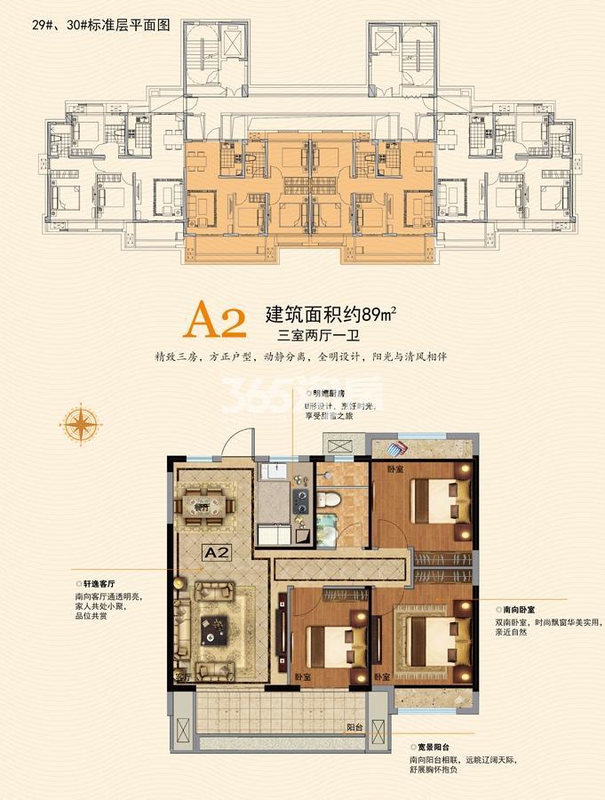 29#30#A2户型图