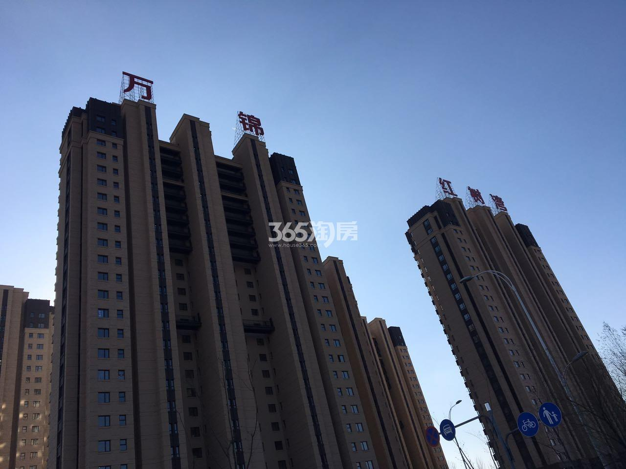 万锦红树湾实景图