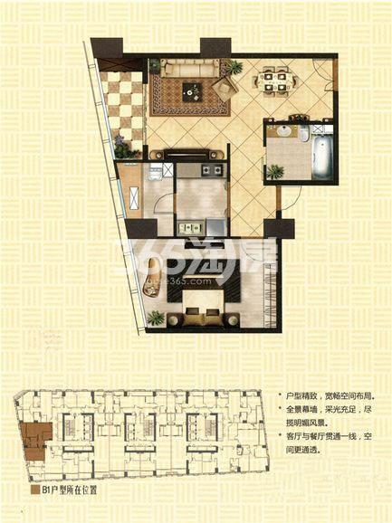 苏宁·尊悦府邸B1户型