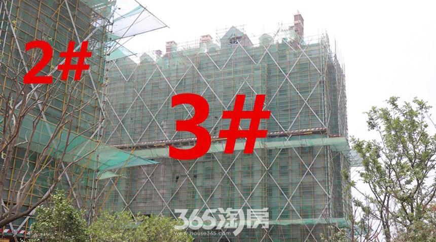 信达公园里7月工程进度2#3#(2017.7.1)