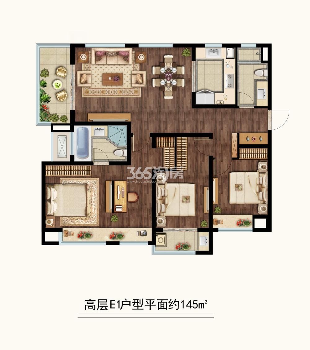 中海凤凰熙岸三期高层约145平E1户型