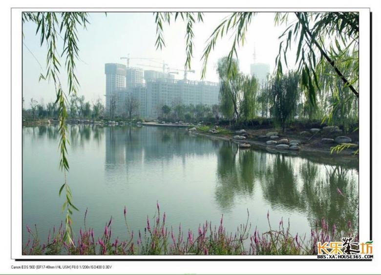 泾渭分明·生态半岛广场舞海选赛精彩花絮一览